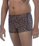 Mens Leopard Print Swimming Trunks